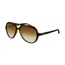 Ray Ban RB4125 Cats Sunglasses Tortoise Frame Crystal Brown Gradient