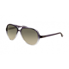 Ray Ban RB4125 Cats Sunglasses Purple Frame Gray Gradient Lens