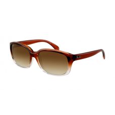 Ray Ban RB4161 Sunglasses Brown Pipe Gradient Translucent Crystal Frame Brown Gradient Lens