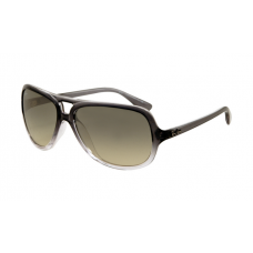 Ray Ban RB4162 Sunglasses Grey Gradient Transparent Crystal Frame Gray Gradient Lens