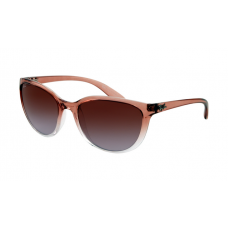 Ray Ban RB4167 Sunglasses Light Brown Top with Transparent Brown Frame Violent