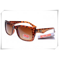 Australia Store Online Ray Ban RB4148 Caribbean Sunglasses for Sale