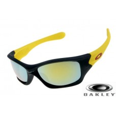 Sale Discounted Oakley Pit Bull Sunglasses USA Outlet Online