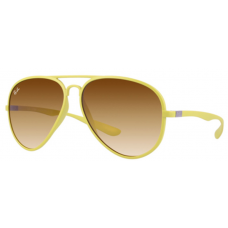 Wholesale Cheap Ray Ban RB4180 Sunglasses Factory Store Canada/USA